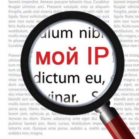 Как узнать свой IP адрес?