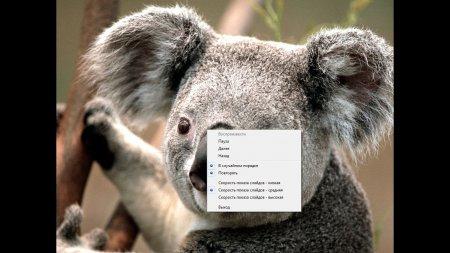 Фото слайд шоу бесплатно на Windows 7