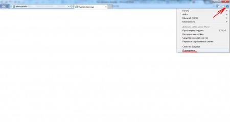 Internet Explorer рабочее окно
