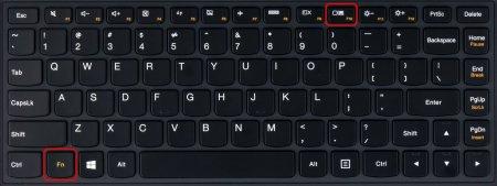 """Комбинация клавиш для переключения режима экрана ноутбука в режим \""""Только проектор\"""" на втором экземпляре"""