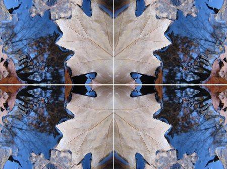 Как сделать зеркальное отображение изображения?