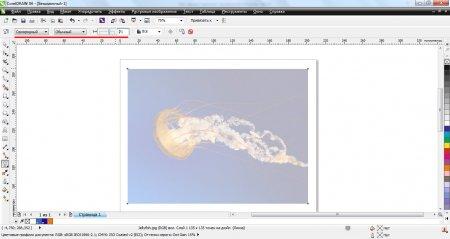 Применение прозрачности к изображению в Corel Draw