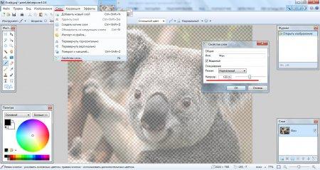 Делаем прозрачную картинку в Paint.NET