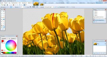 Полученный прозрачный фон на картинке в Paint.NET