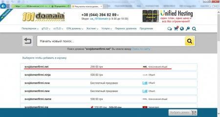 Результат поиска домена